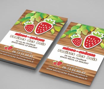 infoceane-realisations-clients-fraisedesbois1